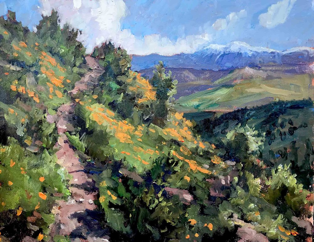 Poppies on Dripping Spring Trail, 11x14 en plein air oil painting by Brad Betts