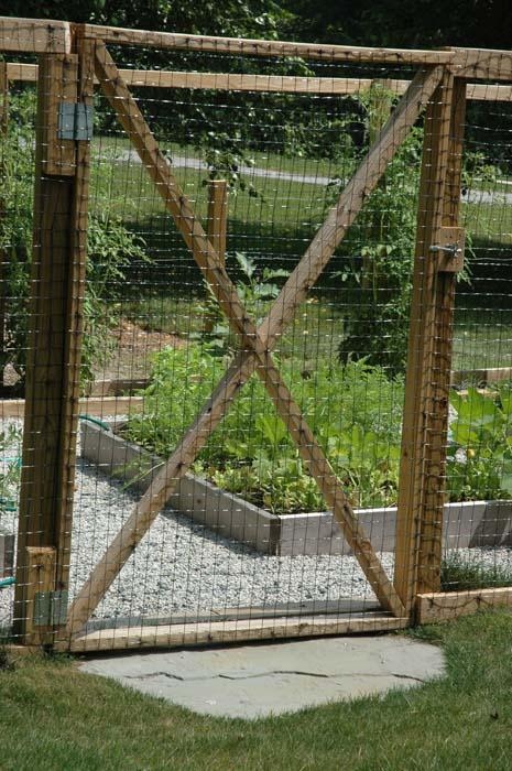 Serre-vegetable garden (3).jpg