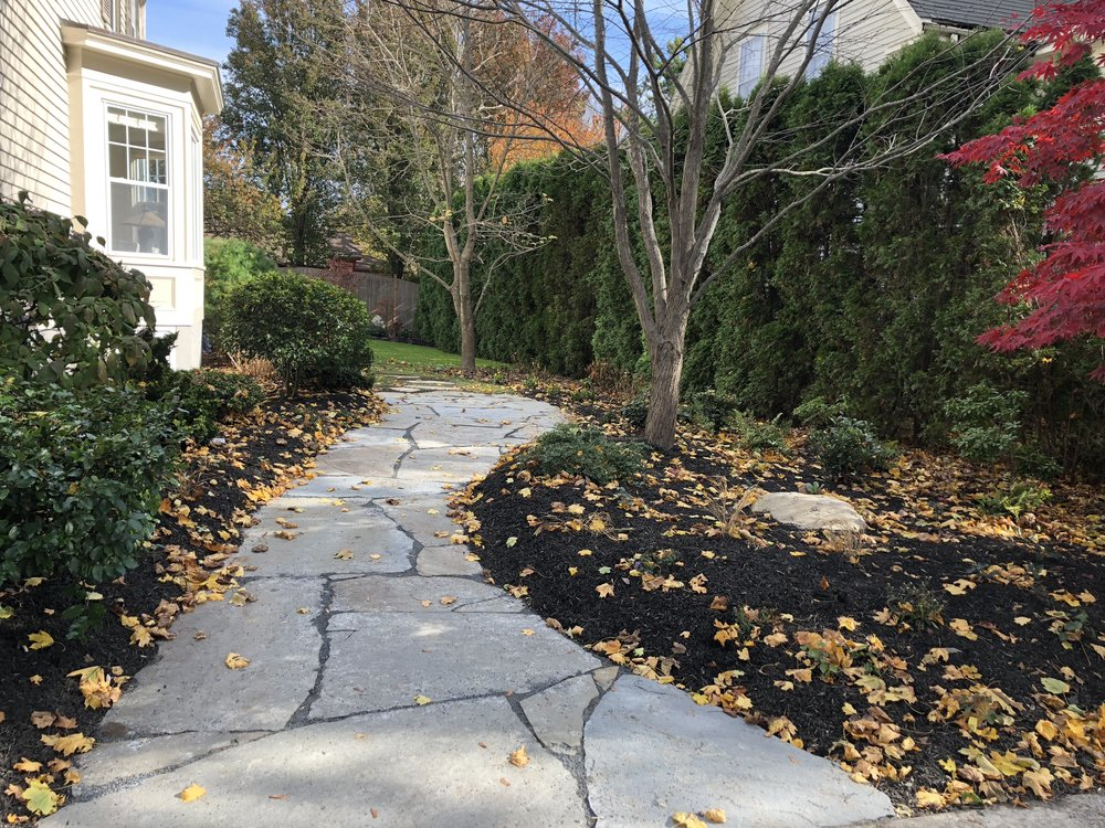 Flagstone path-quarried bluestone path