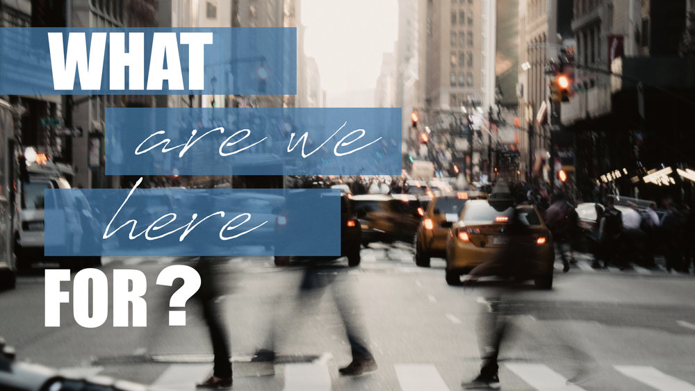 WHAT ARE WE HERE FOR? - GRIMALDI MARTINEZ   7.8.2018   WATCH