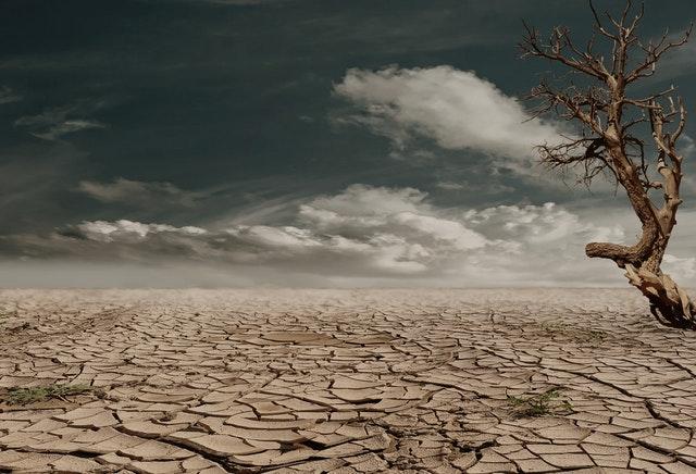 desert-drought-dehydrated-clay-soil-60013-1.jpeg