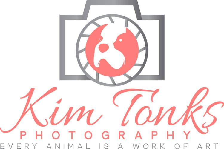 Kim Tonks Photograpy