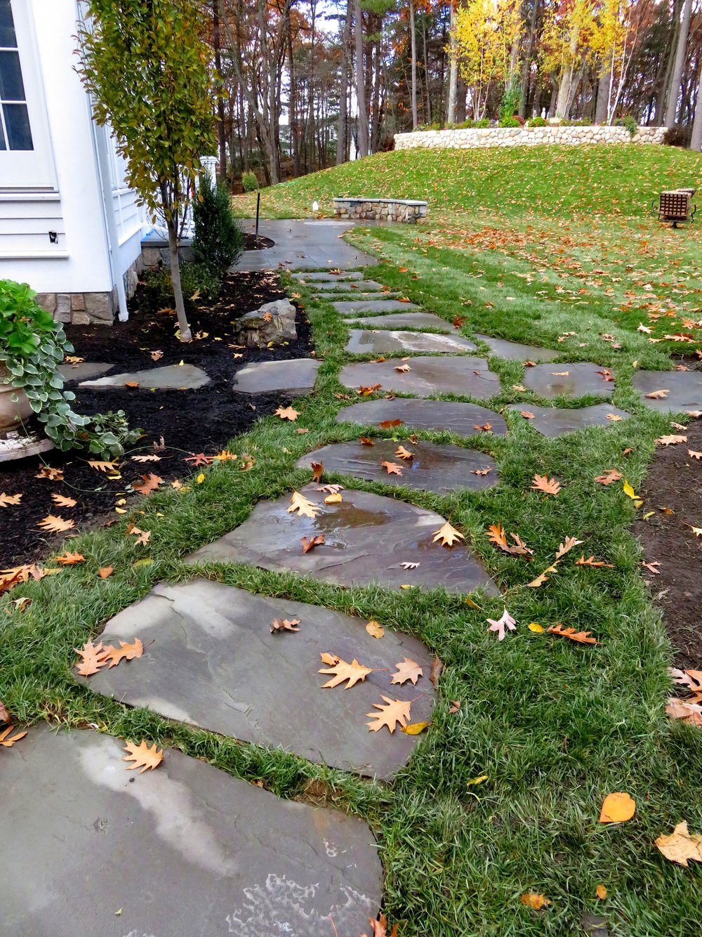 Bluestone Steppers Embedded in Lawn.JPG