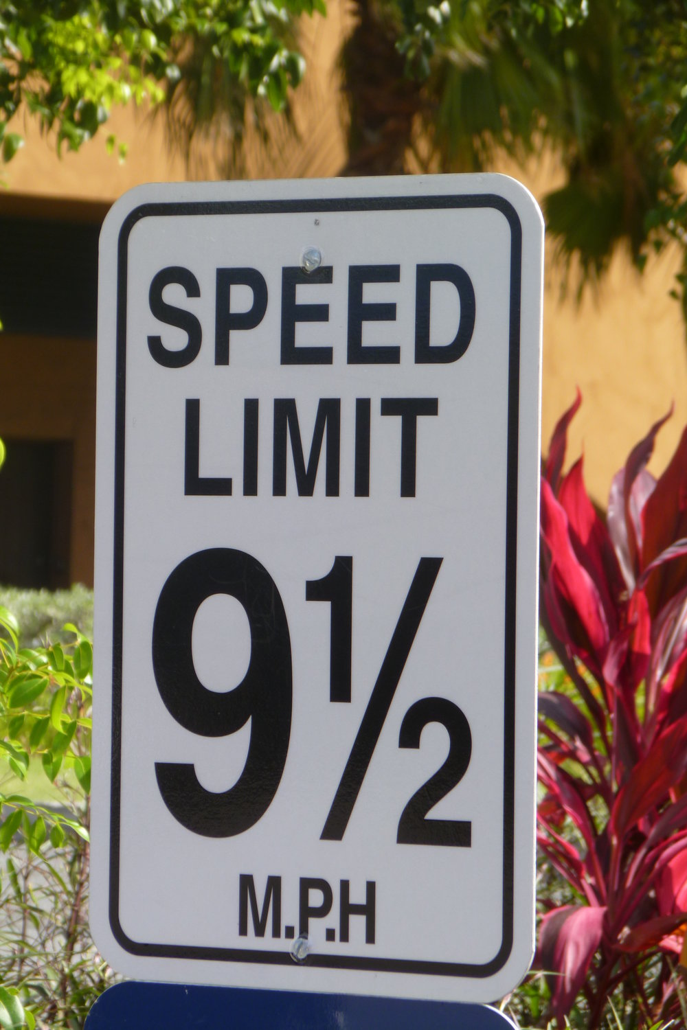 SPEED LIMIT SIGN.jpg