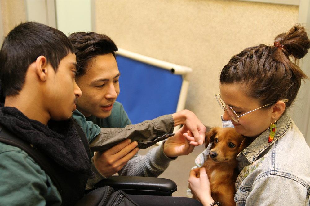 SPCA2.jpg