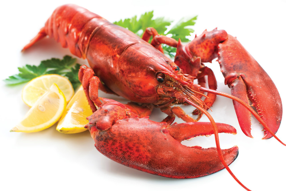 Whole-Lobster-Cooked.jpg