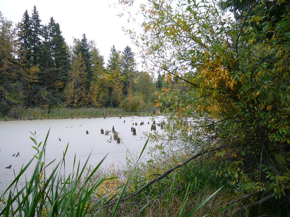 Lake Slou-ise in the autumn.jpg
