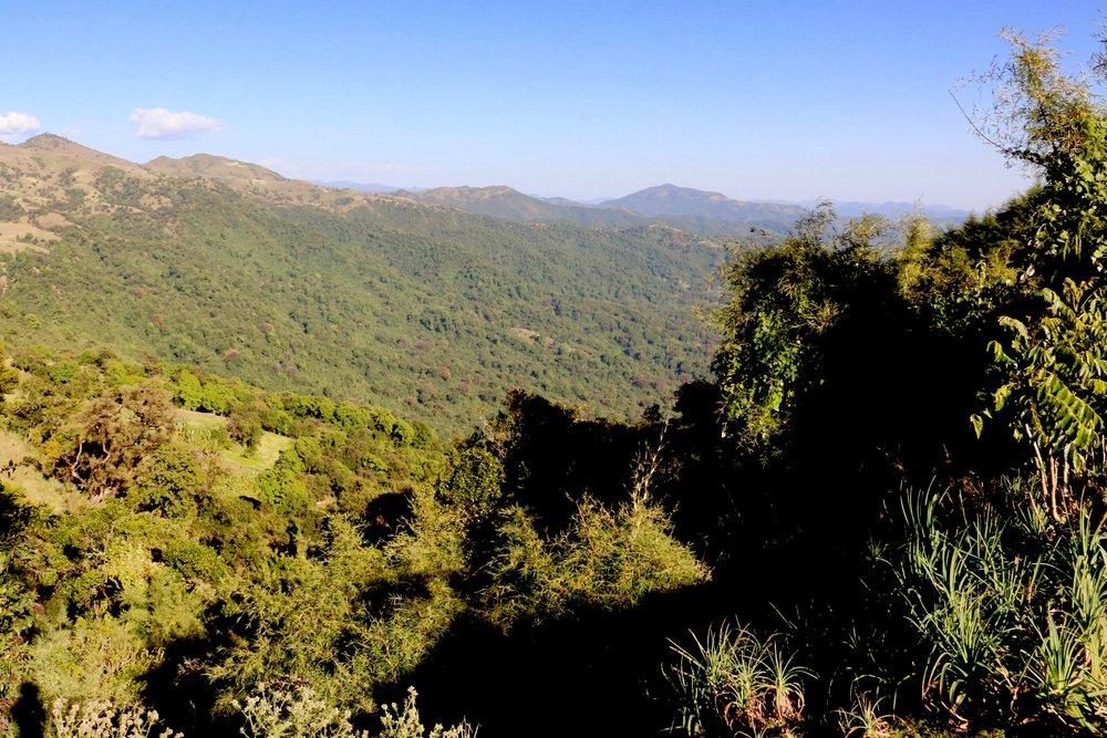 West Arsi, Sidama, Ethiopia.