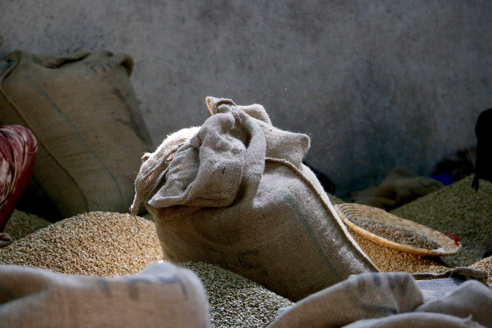 Coffee ready for sorting at the dry mill.