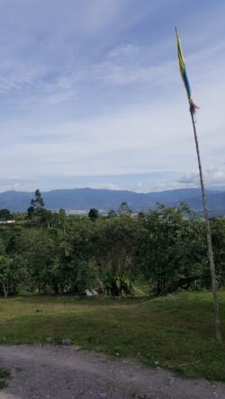 View From El Mirador.
