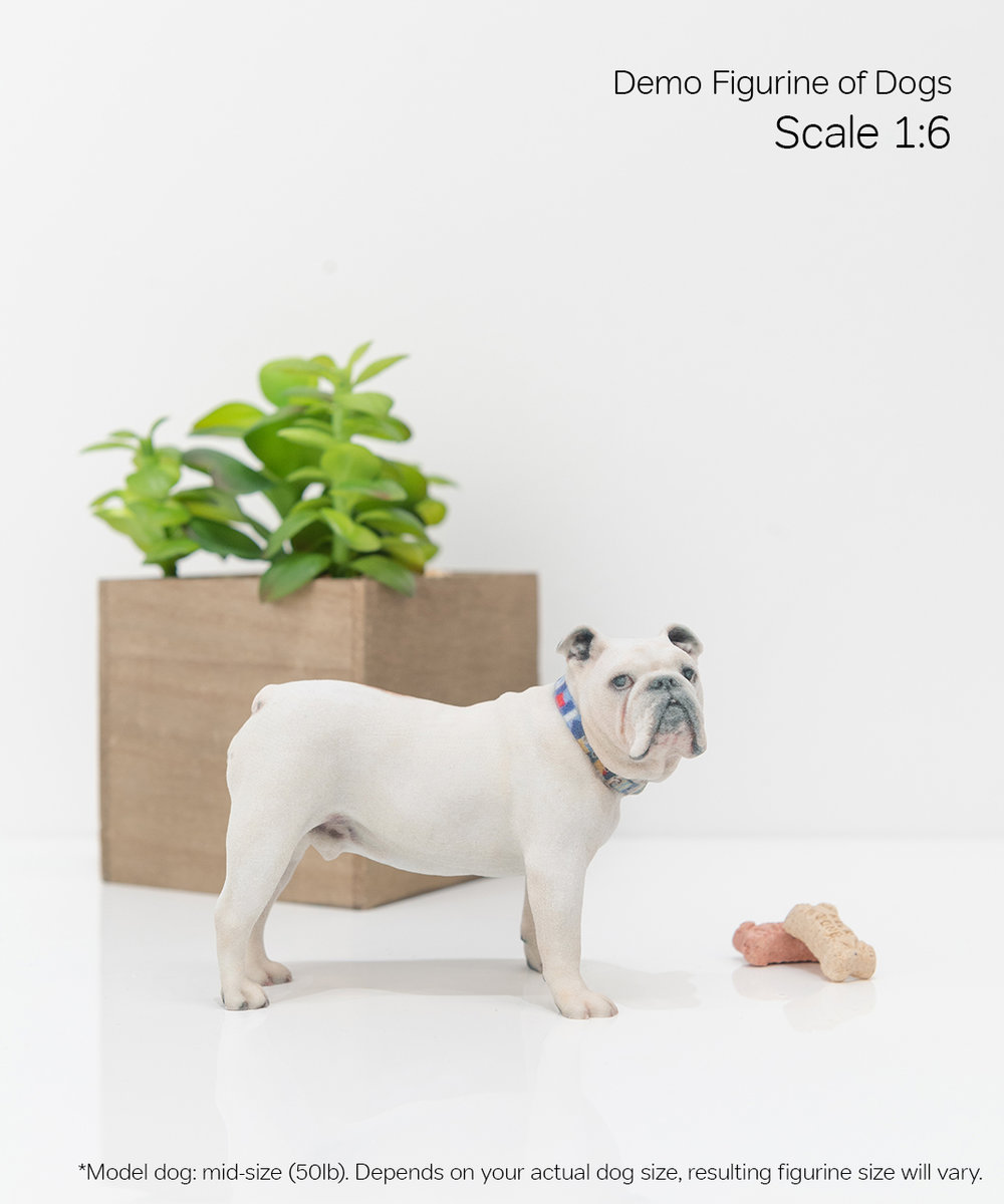 Scale Demo_Dog_7-06.jpg