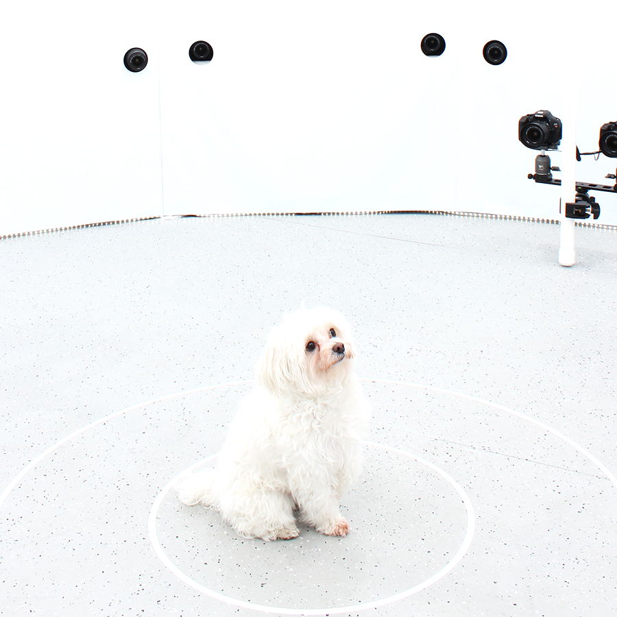 3DBean Gallery_Pet_A14.jpg
