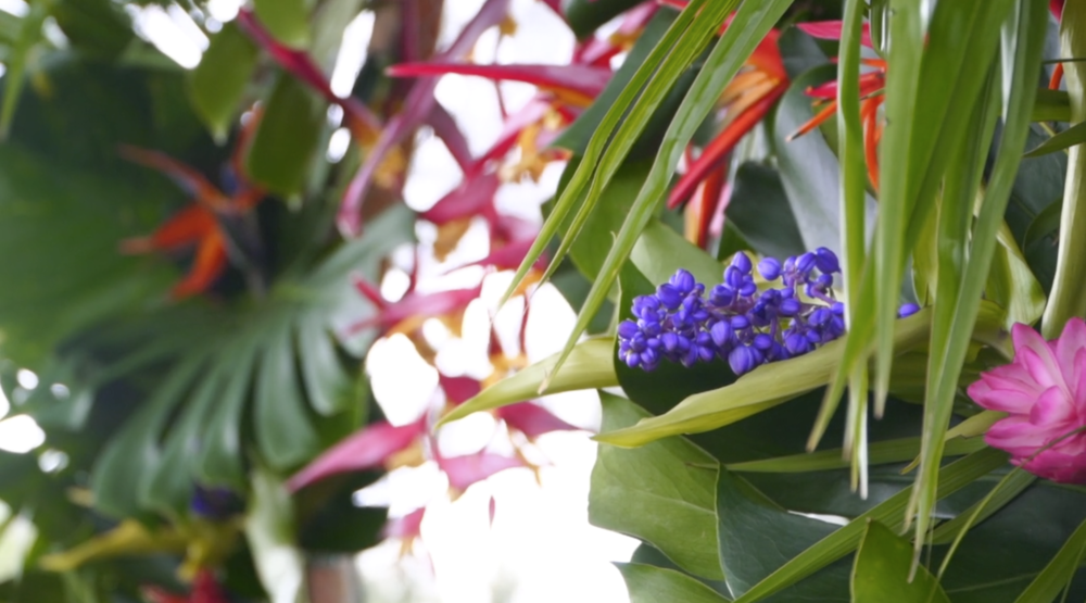 Tropical Wedding Decor // Flowers