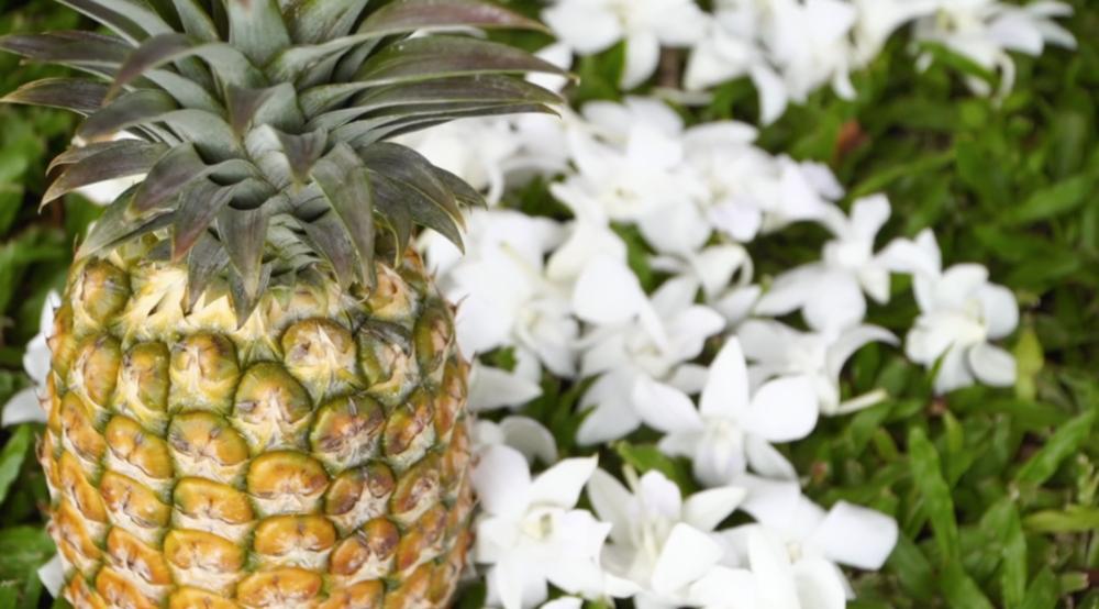 Pineapple wedding decor // Kauai
