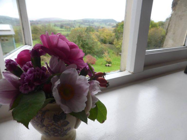 Cottage-view-768x576.jpg