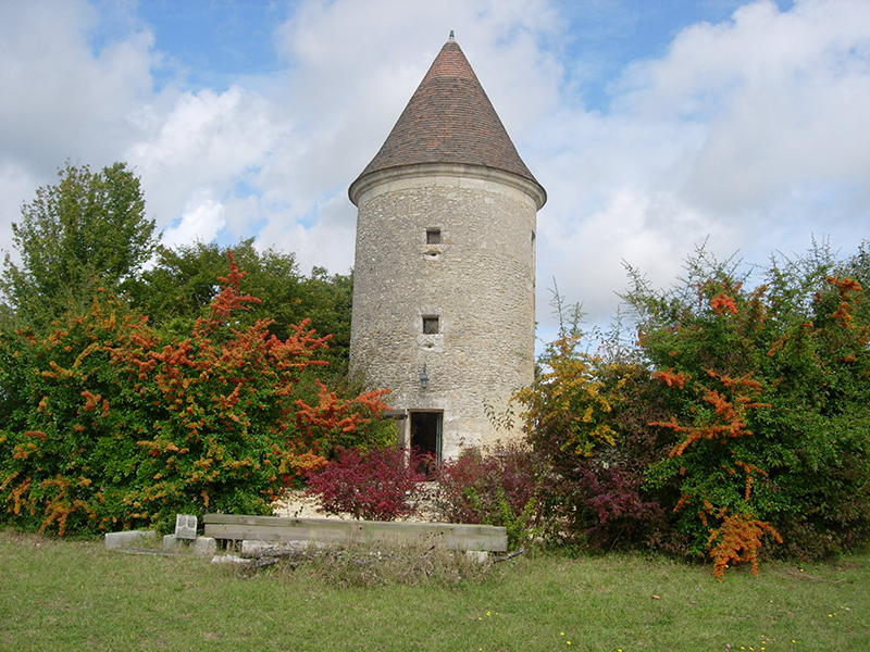 Autumn - Our local village hosts a pumpkin festival in October, the wine growers are harvesting their grapes, the autumn colours are ablaze around the tower, and late summer fruits abound. The pool is usually closed in mid-October.