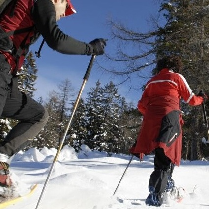 cross country skiing - finger lakes, New York     Photo COURTESY of the Yates County chamber of commerce