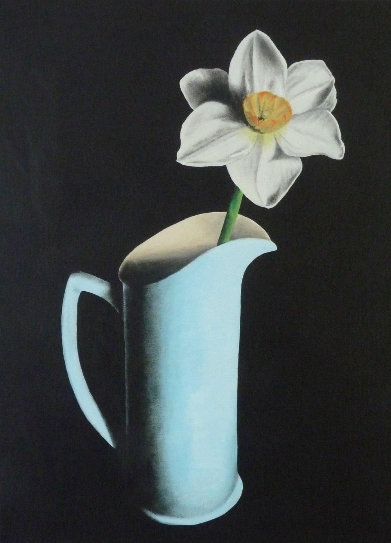 Daffodil in blue jug