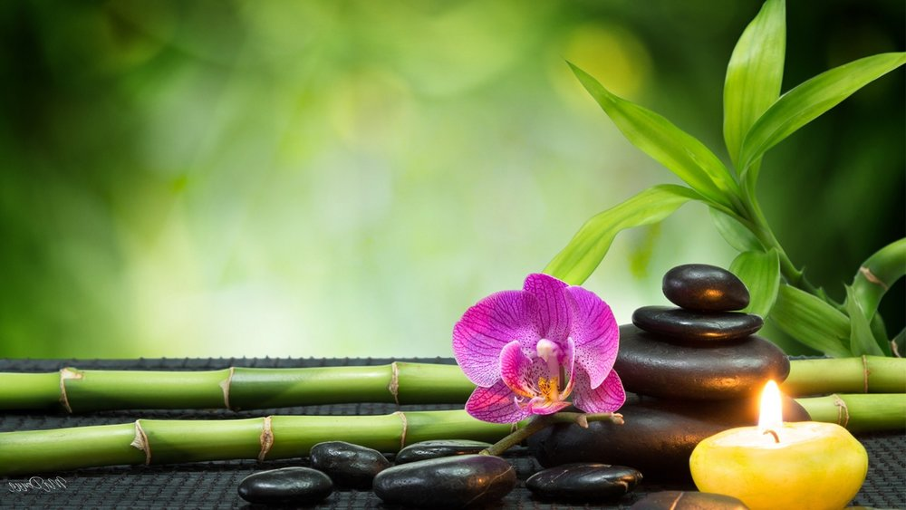 flowers-tranquil-serenity-spa-rocks-bamboo-leaves-orchid-serene-fresh-candle-green-hd-flower-for-pc.jpg