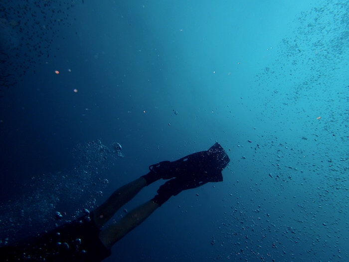 Caribbean Diving underwater fins gratitude