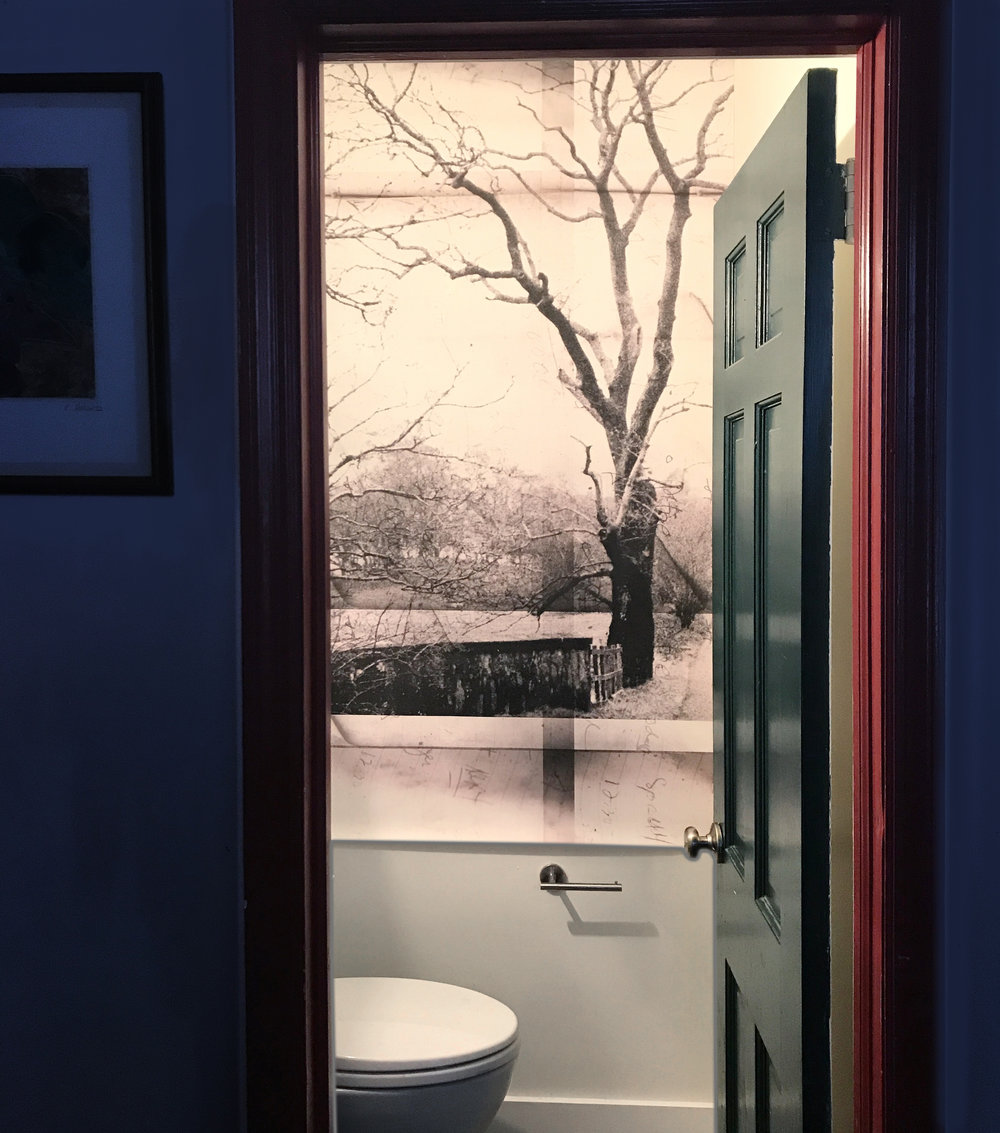 Movable photographic wall vinyl for architect and art consultant, Susan Davis, in Center City, Philadelphia.