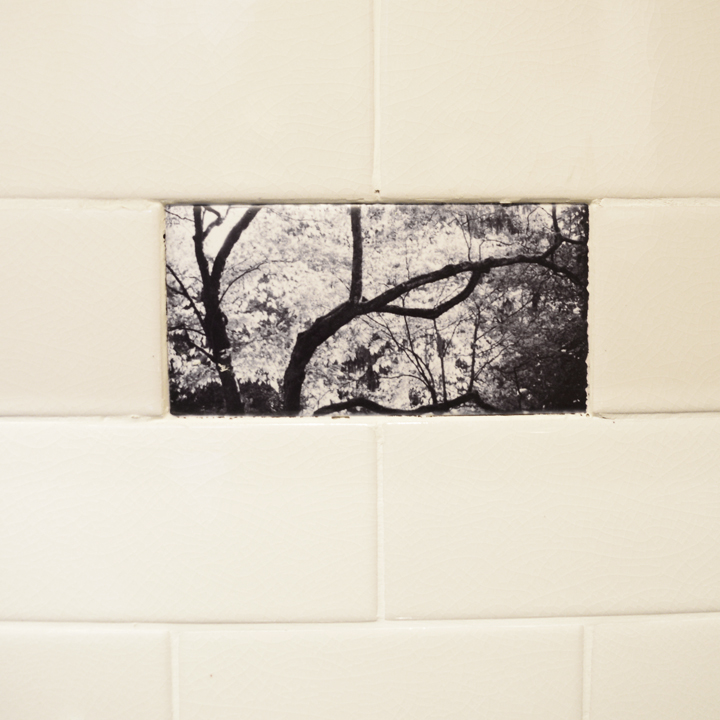 Custom photographic ceramic tiles for a home in Mt. Airy, Philadelphia, based on photographs Julia captured at the client's home.