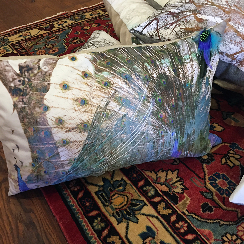Photographic pillows, sold exclusively at  Parisa Rugs & Decor  in Old City, Philadelphia. Julia created them in collaboration with Parisa Abdollahi, designer and owner.