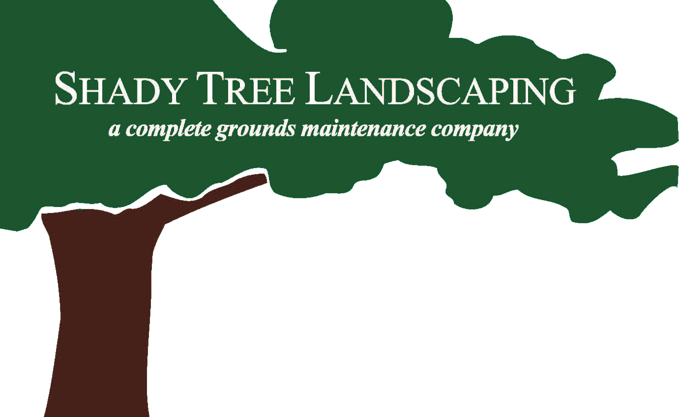 Shady Tree Landscaping & Irrigation
