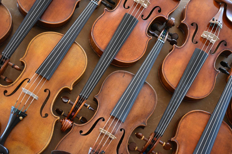 Terra Nova Violins - Violin Shop in Texas