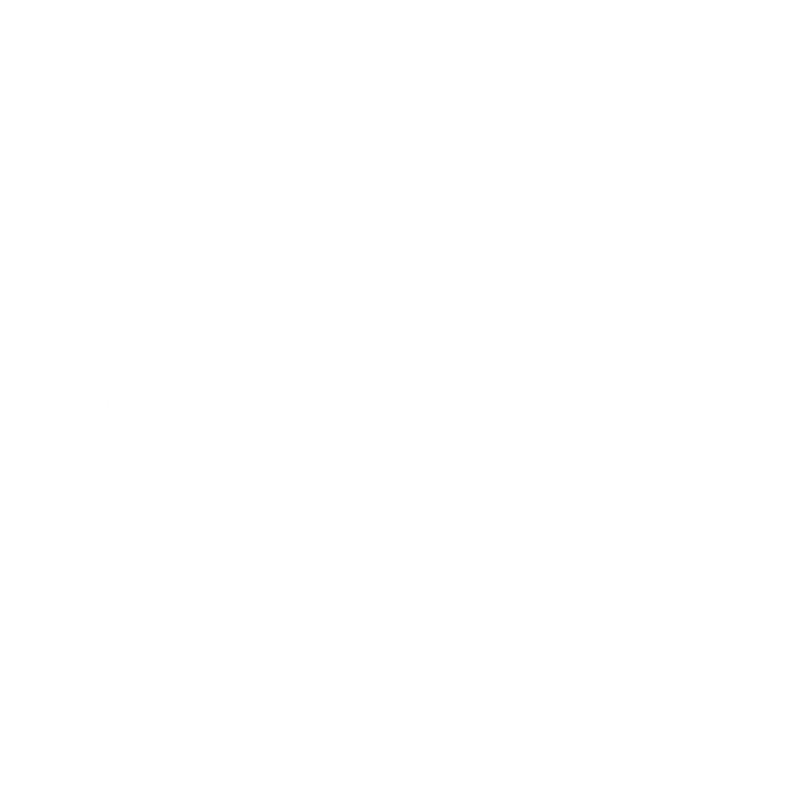 OUTFEST - OFFICIAL SELECTION.png