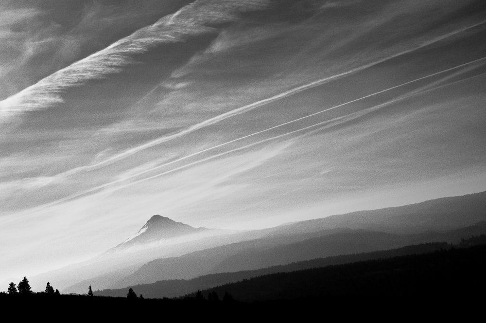 landscape_01.jpg
