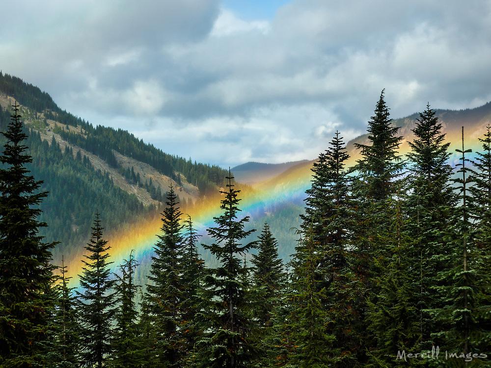 United States_ Washington_ Crystal Mountain_ rainbow in valley through trees..jpg