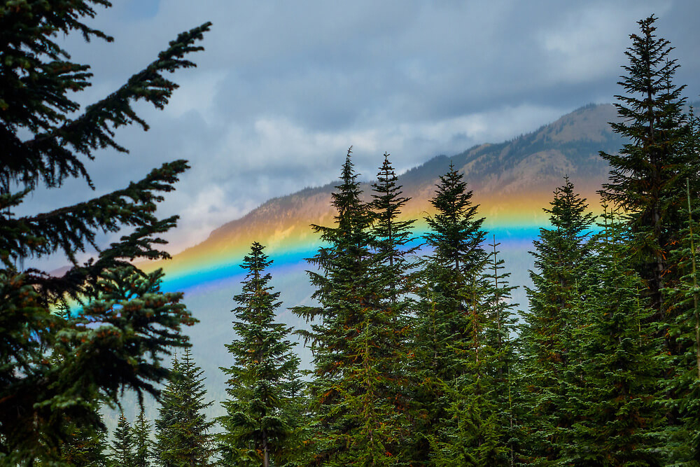 25545_United States_ Washington_ Crystal Mountain_ rainbow in valley throug trees.jpg