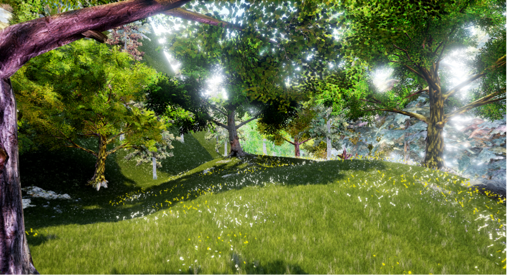 Key perspective view of environment set up
