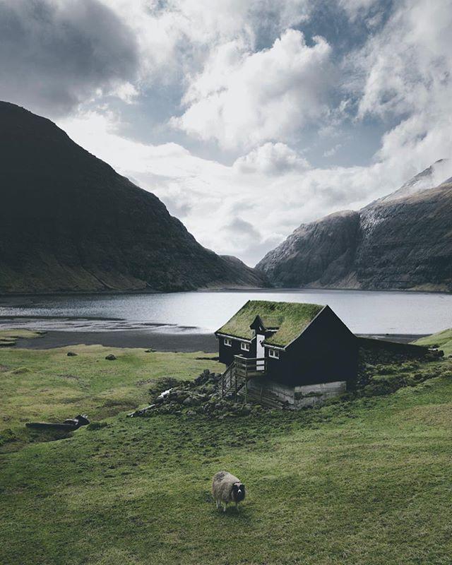 Isle of Sheep Faroe Islands 2018 #letsgosomewhere #travelphotography #packandgo #travel #destinationearth #canon_photos #livefolk  #ig_worldphoto #instagram #liveauthentic  #teamcanon #chasinglight #canonsverige #getoutdoors #traveltheworld #vsco #roamtheplanet #travelstroke  #moodygrams #aov #artofvisual #canonbringit #knowledgecottonapparel