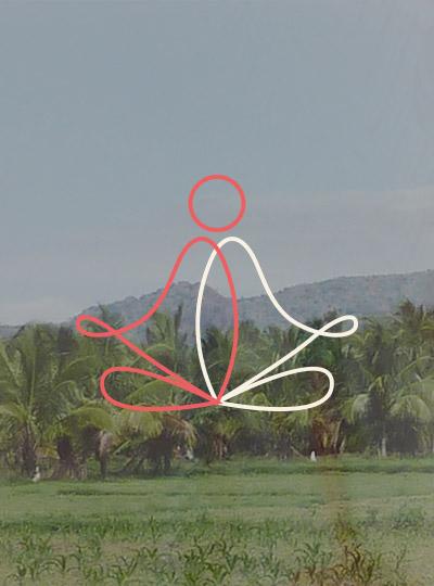 identite-visuelle-centre-prana-01.jpg