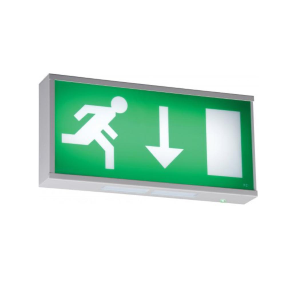 Emergency Exit lights.