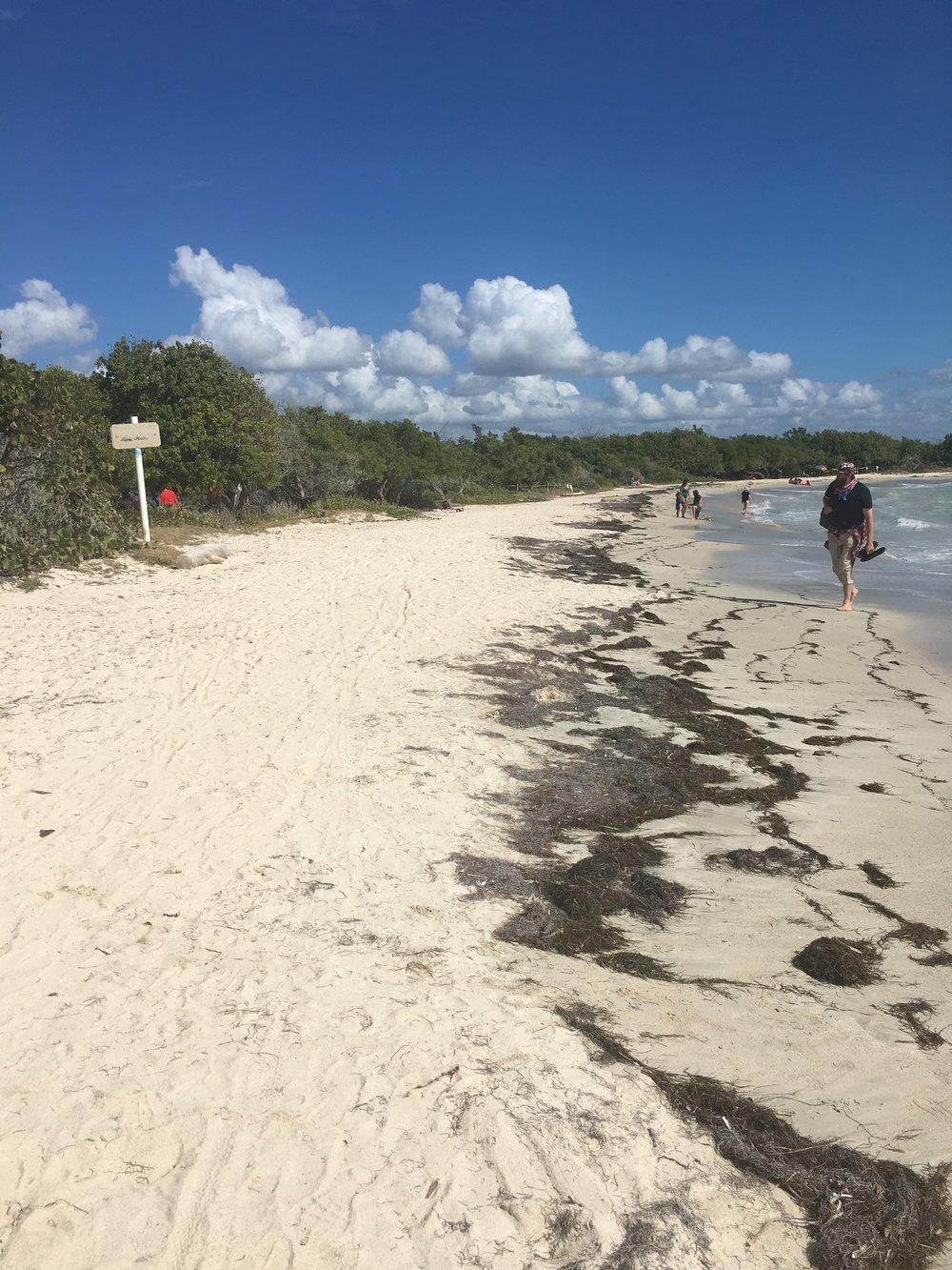 The beach at Playa Sucia
