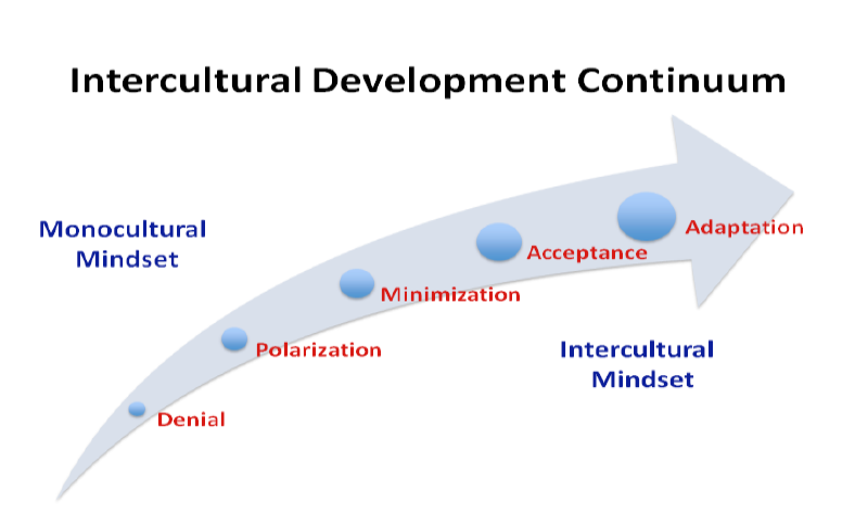 Image from the  Intercultural development Inventory