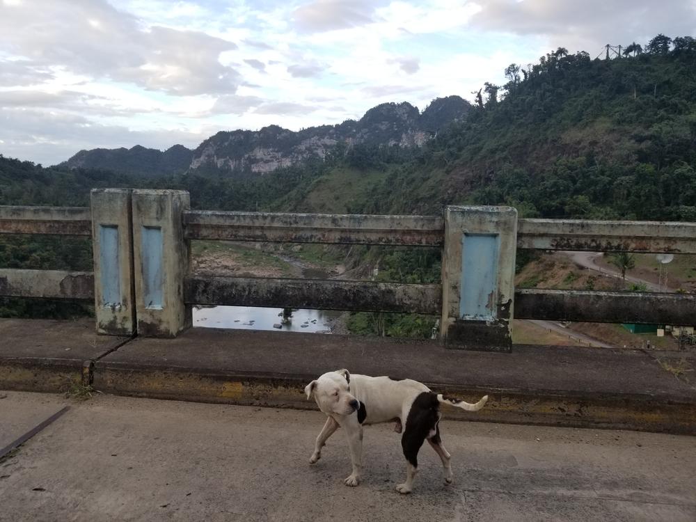 Utuado dam traffic controller