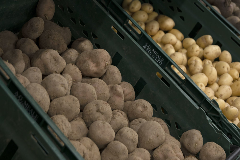 Fiona-Burrage-Meale-and-Son-Norfolk-Photographer-Potatoes.jpg