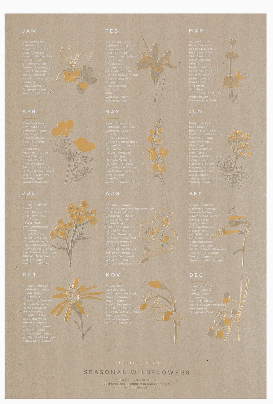 Wildflowers art print with foiling