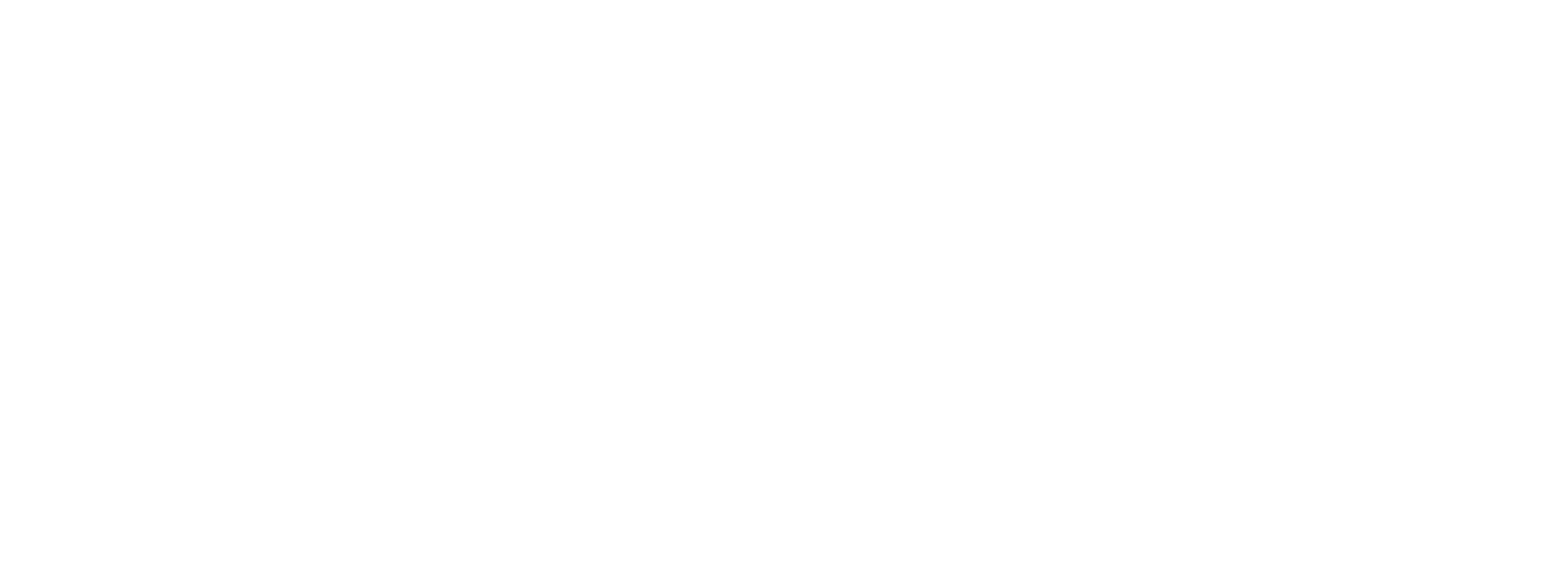 Village Wine & Spirits