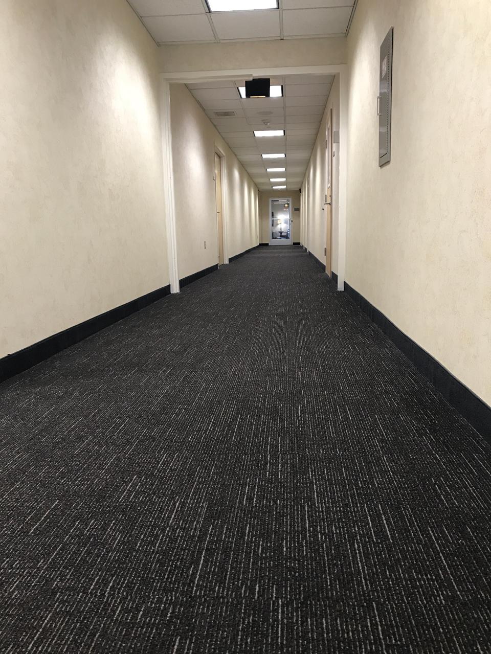 carpet5.png