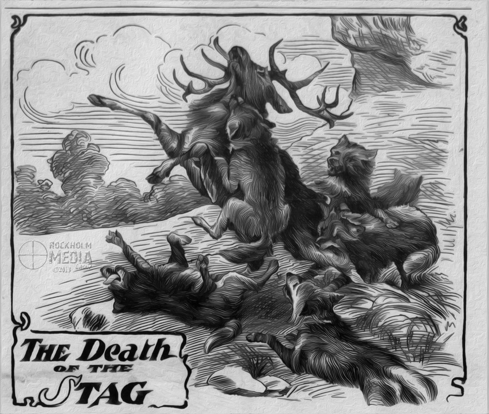 Death of a Stag with watermark.jpg