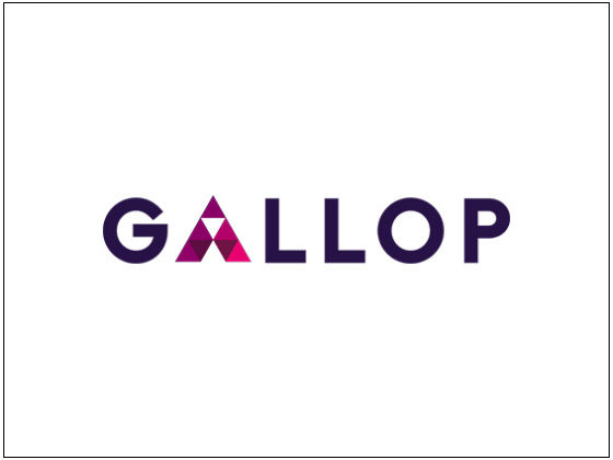 GALLOP    ACQUIRED: BIG VIKING GAMES JAN'16   Gallop's platform leverages data science and in-app behavioural analytics to help mobile publishers find and optimize the most valuable users for their applications.