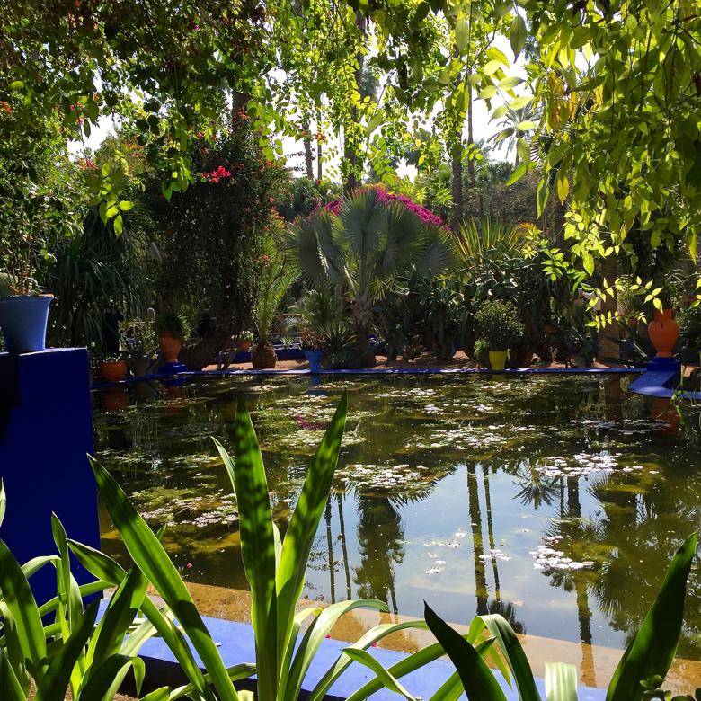 my-visit-majorelle-gardens-oasis.jpg
