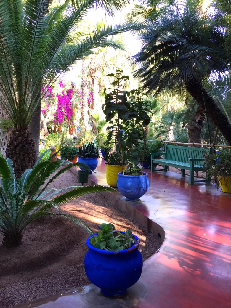 My-visit-Majorelle-garden-Jardin-Majorelle-pathways.jpg