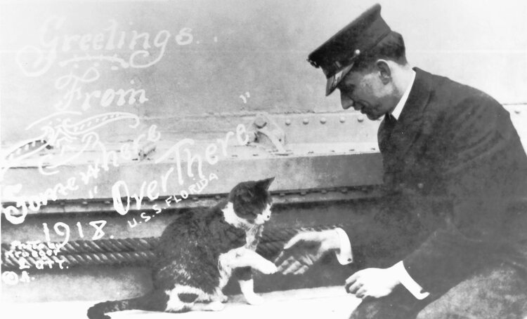 Image from  https://www.smithsonianmag.com/travel/adorable-heroic-animals-museum-maritime-pets-180955012/  of a sea captain and his cat. Potentially worth noting, this photo was taken during the influenza pandemic of 1918.