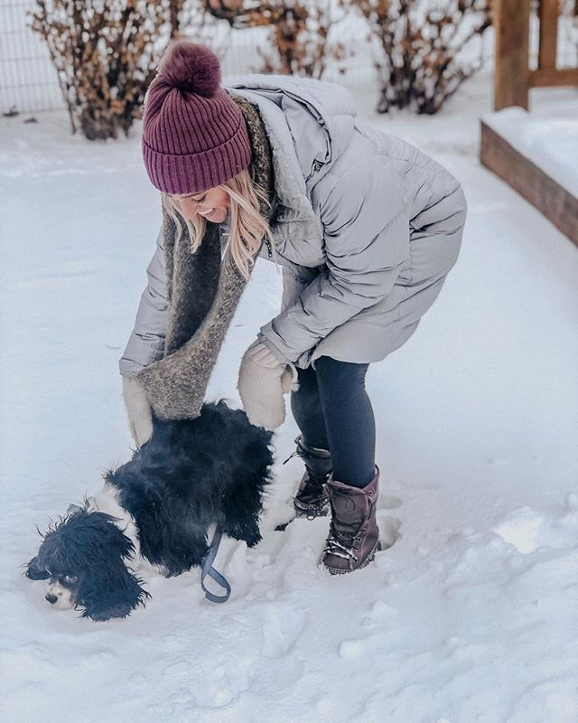 My dog thinks he's really funny when he tries to run around in -15 degree weather. Good try pup! 🥶 FYI, new blog post up now talking about how to keep your skin hydrated this winter! Link in bioooooooo